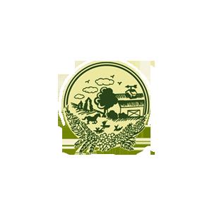 kingstown-logo.png