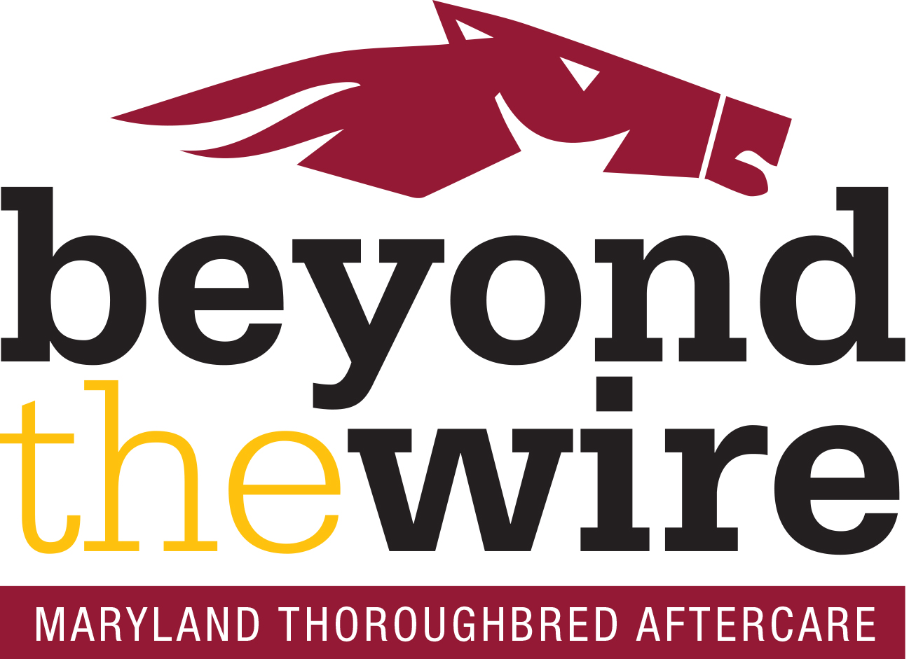 Beyond The Wire Logo FINAL