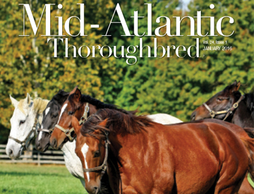 Mid-Atlantic Thoroughbred